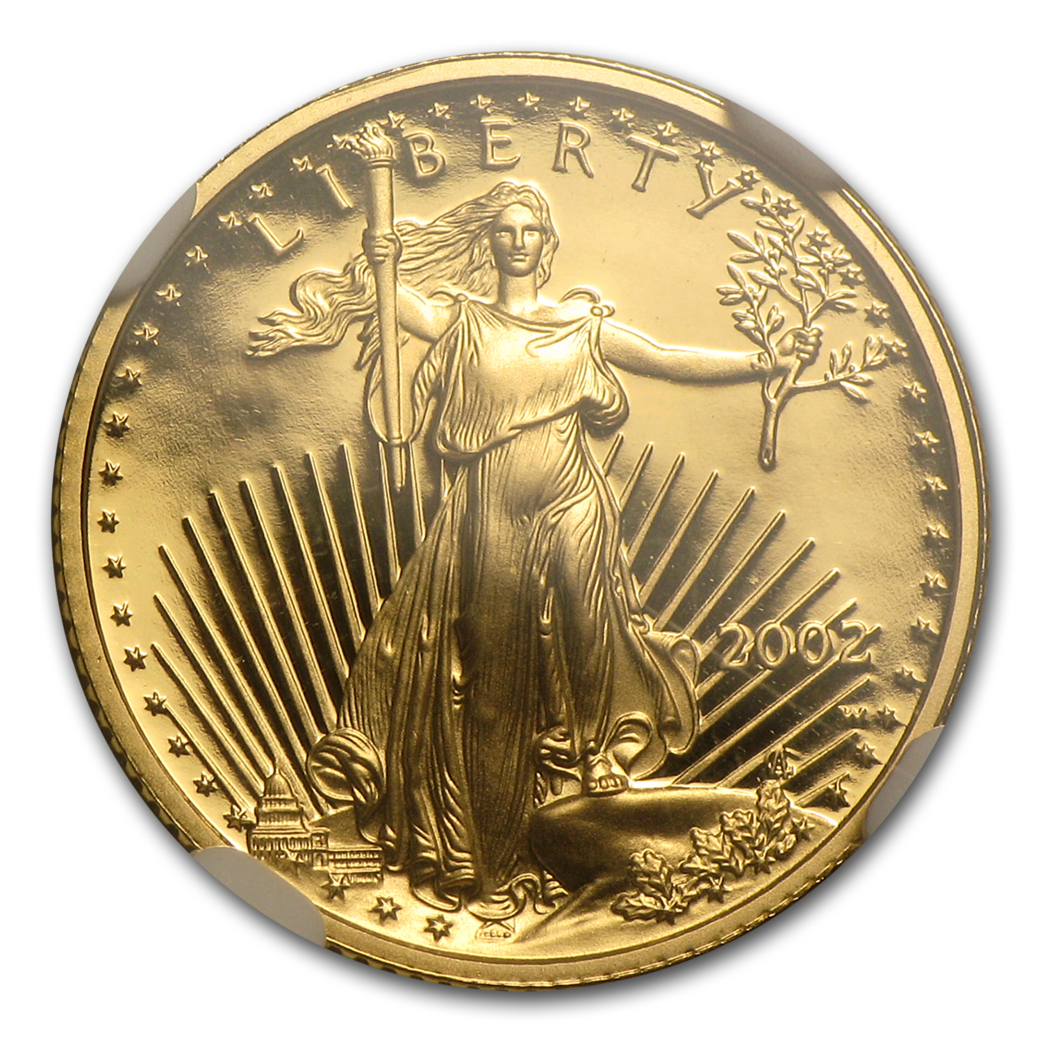 2002-W 1/10 oz Proof Gold American Eagle PF-70 NGC